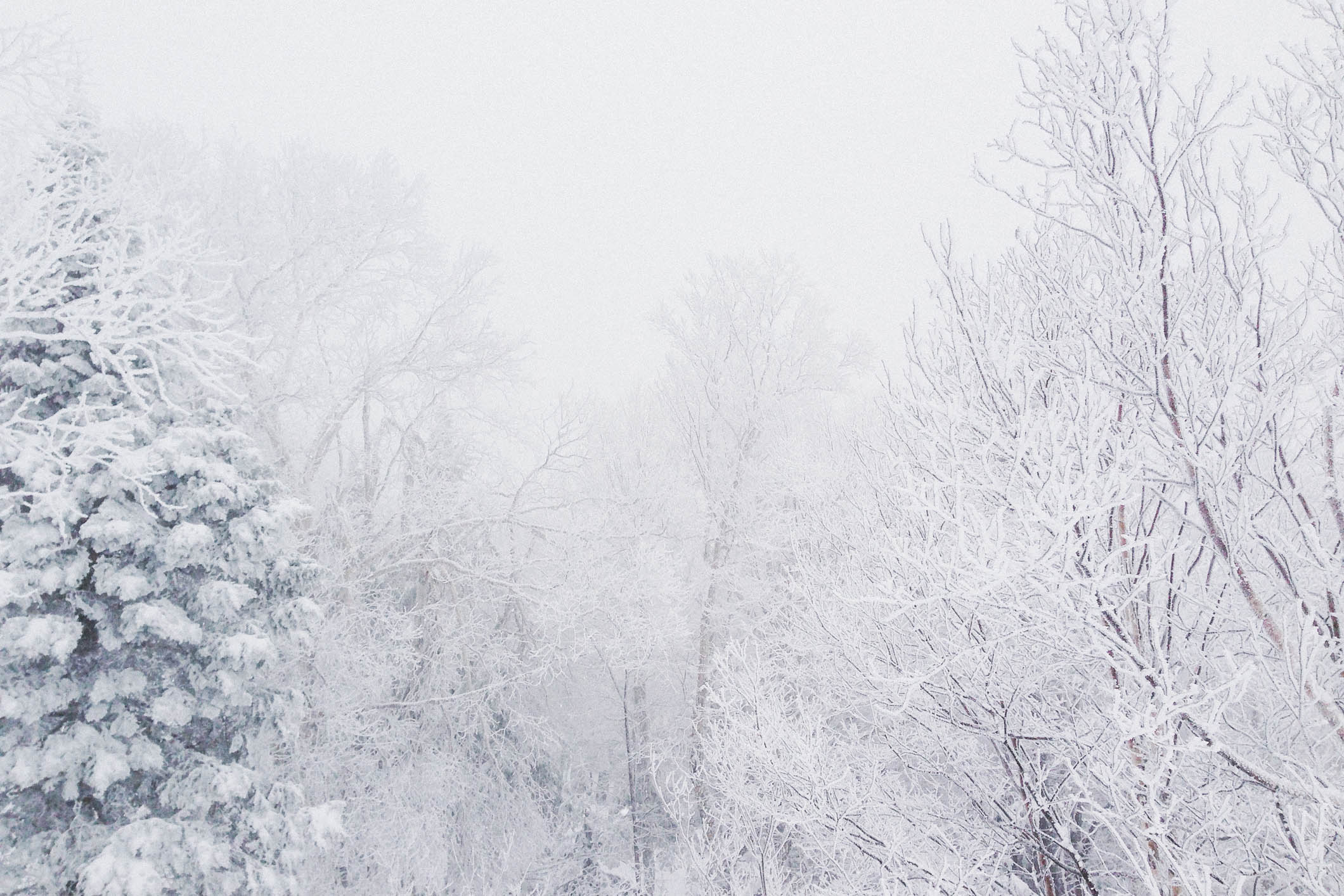 snowy-vermont-01