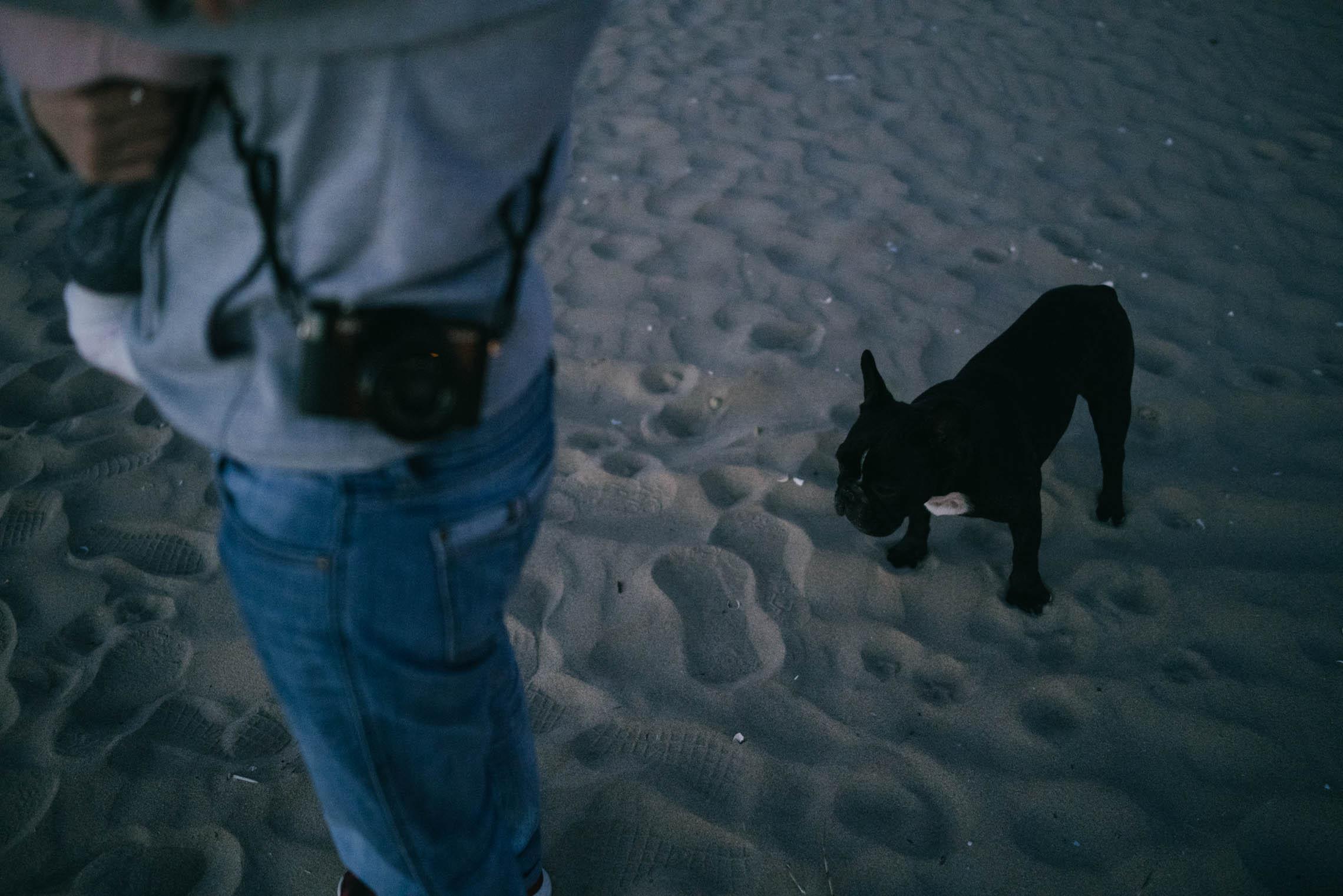 meia-praia-dusk-06@2x